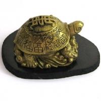 Черепаха с иероглифами на панцире